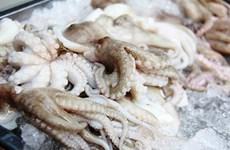 越南墨鱼和章鱼远销世界38个市场