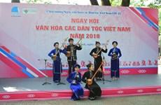 越南各民族文化节在胡志明市举行