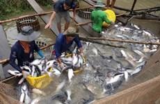 2018年4月份越南水产养殖和海洋捕捞产量均保持增长态势