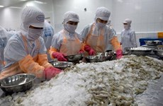 坚江省提高出口产品的竞争力