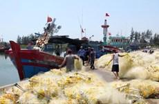 岘港市继续加大力度防范非法捕捞行为