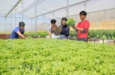 越南广宁省推进农业可持续发展