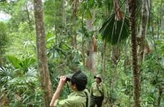 森林环境服务费收入增长近70%