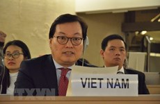 越南强调了通过和平方式解决加沙地带紧张局势的必要性