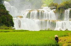 高平省社区旅游服务质量仍有待提高
