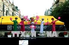 越南在2018布拉格国际文化艺术节获得成功