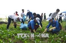 近500名青年团员参加绿色越南海洋运动