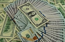 30日越盾兑美元中心汇率下降15越盾