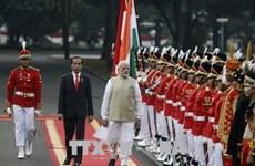 印度与印尼建立新的全面战略伙伴关系