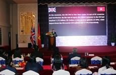 越英建交45周年庆祝活动在胡志明市举行
