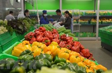 今年前5个月越南蔬果出口额达16.2亿美元