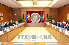 越南国会主席阮氏金银与密克罗尼西亚联邦国会议长韦斯利·西米纳举行会谈