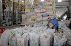 泰国大米产量呈现猛增态势