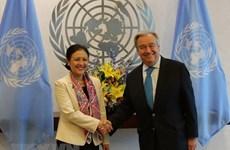 联合国高度评价越南在多边框架下的积极作用