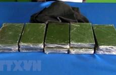 越南破获多起跨境走私运输毒品案