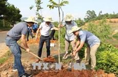 越南积极响应世界防治荒漠化与干旱日