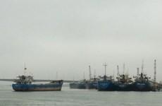 政府副总理郑廷勇就广治省海陵县美水码头投资项目作指示
