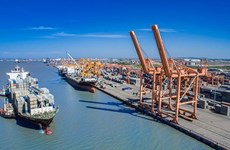 越南航海总公司股份制方案获批
