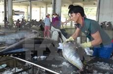 越南水产品对中东地区出口增长余地仍很大