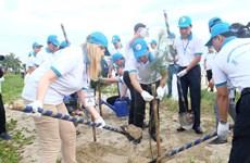 """越南与各国际组织启动""""携手保护海洋""""计划,保护人类共同的海洋蓝色家园"""