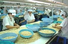全国腰果出口总额达14.1亿美元