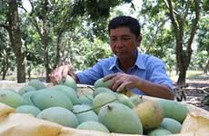 越南与瑞士农业贸易投资论坛在瑞士举行