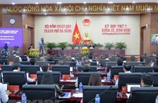 国会副主席丛氏放出席岘港市人民议会会议