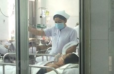 甲型H1N1流感是越南三种季节性流行性流感之一