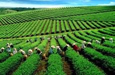 美中贸易战对越南农业有什么影响?