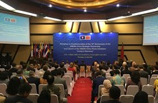 促进东盟与中国战略伙伴关系