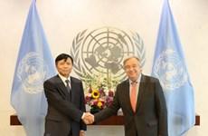 联合国秘书长高度评价与越南的合作关系