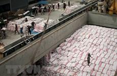 2018年上半年柬埔寨大米出口量同比下降5.9%