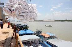 越南一私企中标向韩国出售6万吨糙米