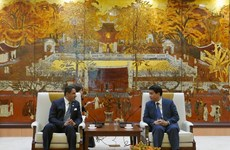 进一步促进河内与阿联酋的务实合作