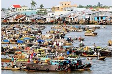 越南西部水上生活的引人入胜的景点