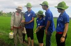 青年科学家与知识分子的志愿精神在农村地区绽放