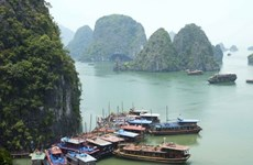越南广宁省拟于2019年1月1日起对下龙湾参观门票进行调整