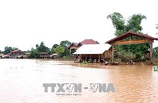 老挝水电站大坝坍塌事故:未接到有越南人失踪的报告