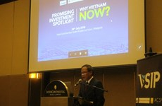 越南成为了马来西亚投资的亮点