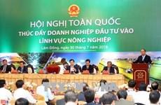 政府总理阮春福:力争未来10年把越南跻身世界15大农业最发达的国家行列