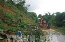 自然灾害继续对越南各地造成重大损失