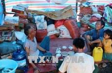 越南政府决定向莱州省灾民发放大米