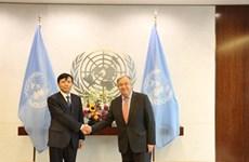 外交有助于维护国际安全和和平稳定环境