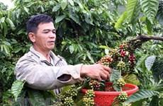 """""""地理标志——越南文化与自然遗产""""书籍将于本月底发布"""
