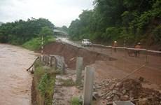 北部各省开展第四号台风灾后恢复重建工作