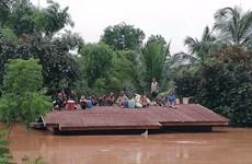 越南驻俄罗斯大使馆为老挝水电站倒塌事故灾民发起爱心捐款活动