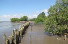 海岸带生态系统可持续发展与保护经验交流研讨会在河内举行
