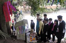 越南瑶族的开林门仪式