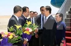 埃及媒体:陈大光访埃之旅将为两国合作开启新篇章