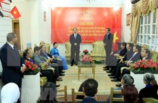 陈大光走访越南驻埃及大使馆